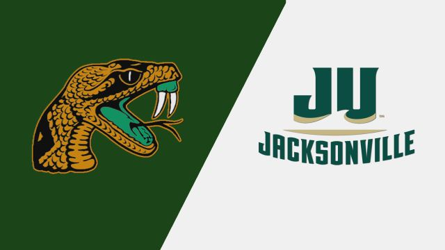 Florida A&M vs. Jacksonville (M Basketball)
