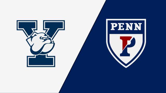 In Mandarin-Yale vs. Pennsylvania (M Basketball)