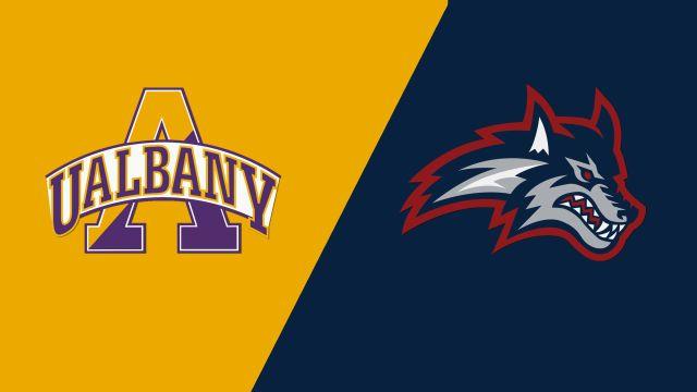 Albany vs. Stony Brook (Championship)