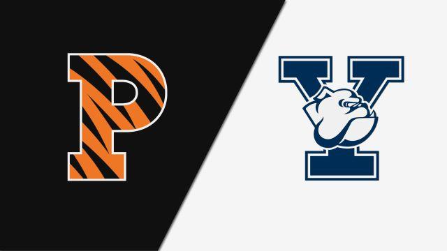 Princeton vs. Yale (M Hockey)