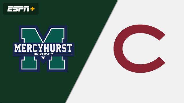 Mercyhurst vs. Colgate (W Hockey)