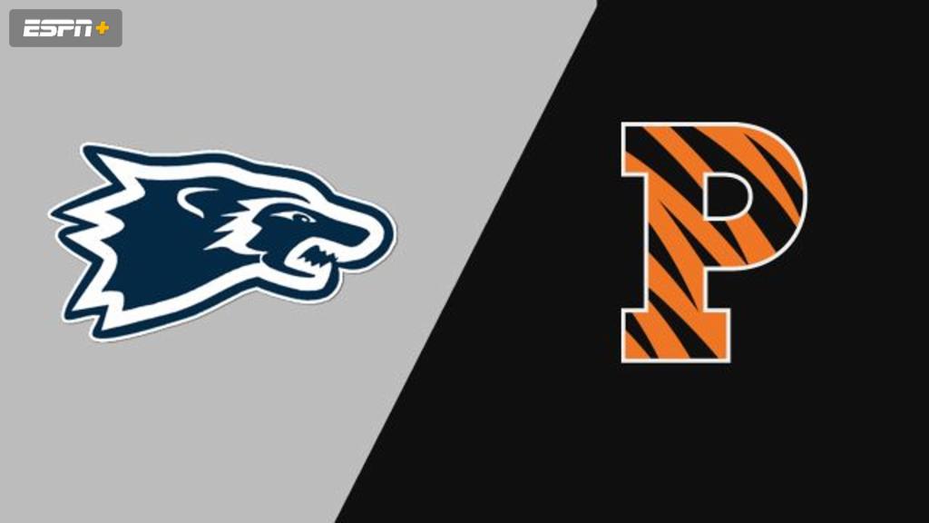 Wesley vs. Princeton (M Basketball)