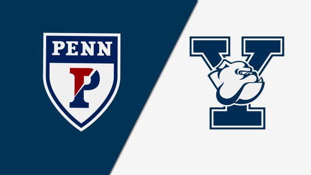 Pennsylvania vs. Yale (W Volleyball)