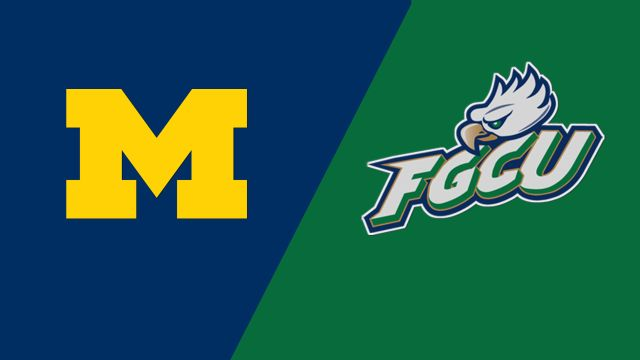 Michigan vs. Florida Gulf Coast (W Soccer)