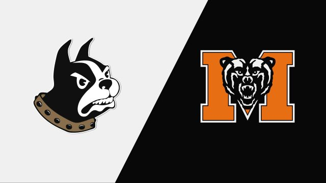 Wofford vs. Mercer (Semifinal #1) (SoCon Women's Basketball Championship)