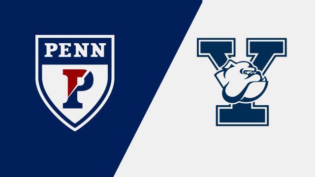 Pennsylvania vs. Yale (M Basketball)