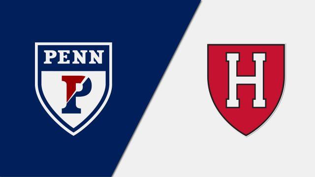 #13 Pennsylvania vs. Harvard (W Lacrosse)