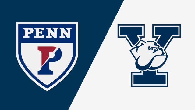 #10 Pennsylvania vs. Yale (W Lacrosse)