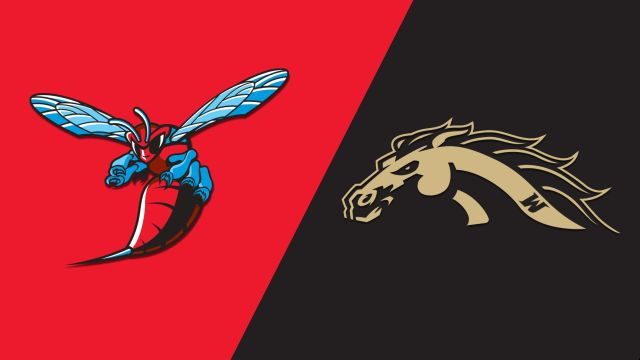 Delaware State vs. Western Michigan