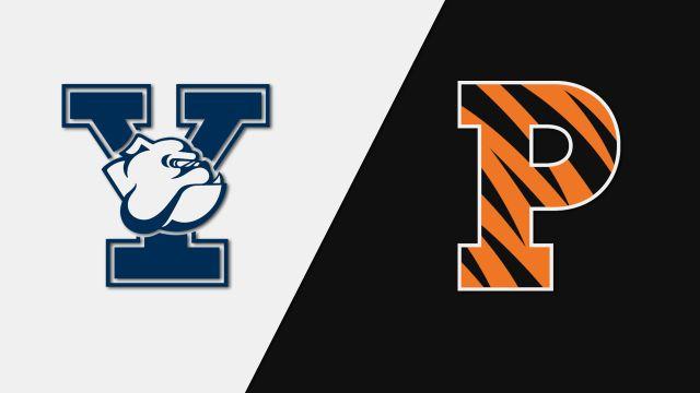 Yale vs. Princeton (W Volleyball)