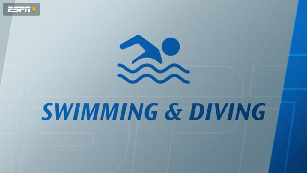 Yale, Princeton, and Harvard Men's Diving (Diving)