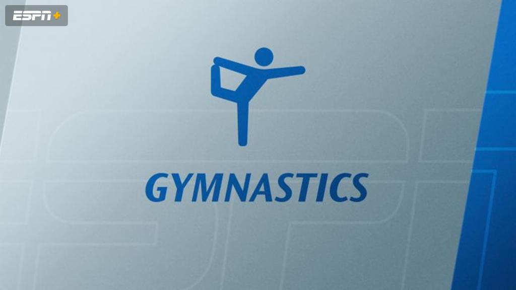 Bridgeport, SCSU, Springfield, and Yale Women's Gymnastics (W Gymnastics)