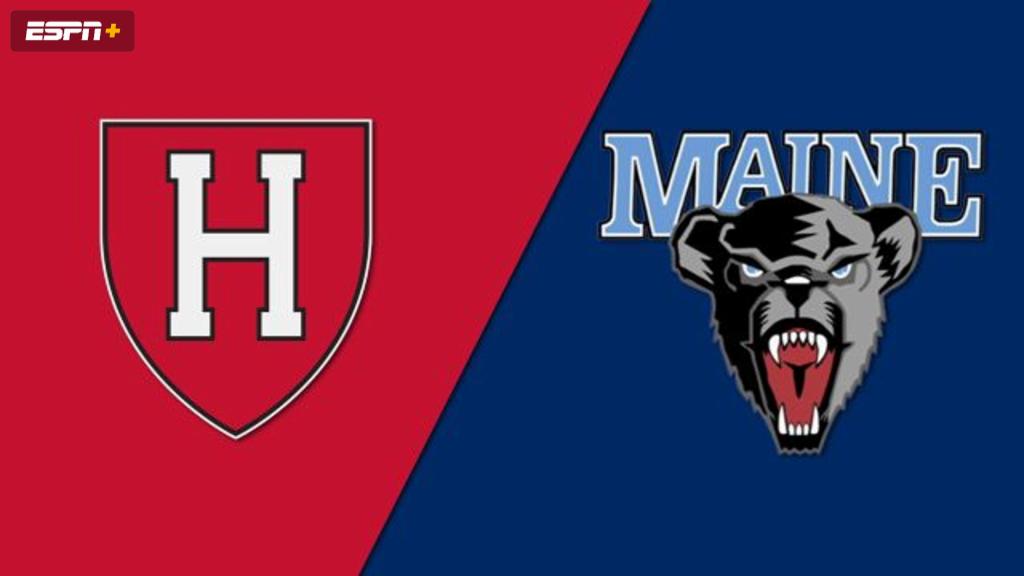 Harvard vs. Maine (Field Hockey)
