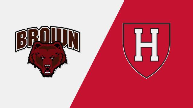Brown vs. Harvard (W Hockey)